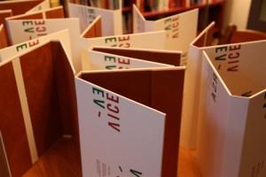 L'étui et la boîte de conservation pour livres - Projet particulier pour livres d'artistes