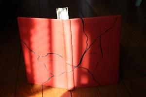 Plein cuir, Reliure contemporaine : nombreuses possibilités esthétiques